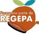 Logo Regepa